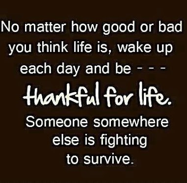 Quotes: Thankful for life